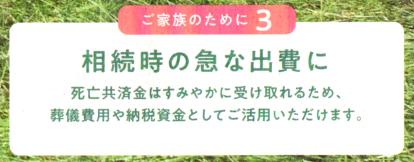 A1ゴシック・JA共済3.png
